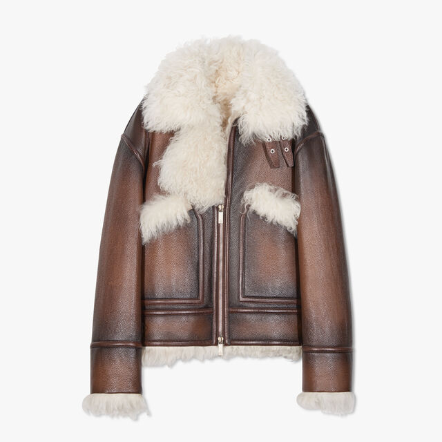 Grain Patina Leather Blouson With Shearling, EARTH BROWN, hi-res